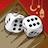 icon Backgammon Plus 4.27.0