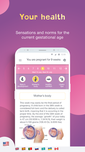 Pregnancy Calendar and Tracker