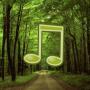 icon Forest Sound