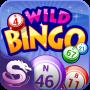icon Wild Bingo