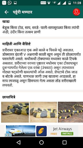 Snake Friend - Sarpamitra