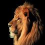 icon اصوات الحيوانات