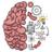 icon Brain Test 2.676
