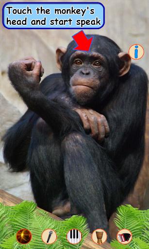 Talking monkey