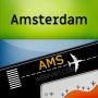 icon AMS