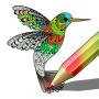 icon Colouring