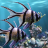 icon The real aquariumfree 2.32