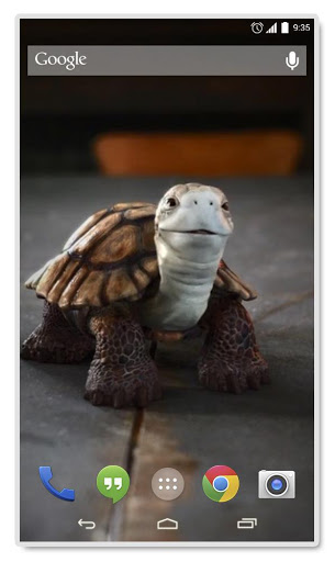 Talking Turtle Live Wallpaper