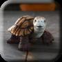 icon Talking Turtle Live Wallpaper