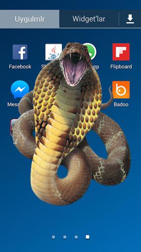 Snake Screen