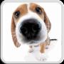 icon Dog Licks Screen LWP