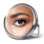 icon Mirror Plus