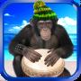 icon Monkey