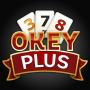 icon OkeyPlus